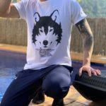 lobo animal de poder animales de poder animal totemico animales totemicos